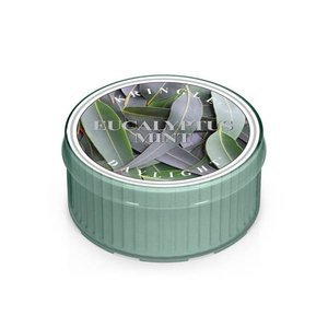 Kringle Candle Coloured Daylight Świeczka zapachowa Eucalyptus Mint